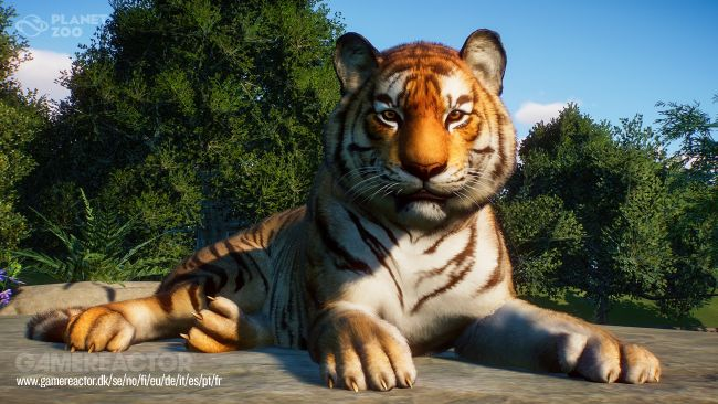 Planet Zoo, nos impressions sur la beta de la simulation zoologique