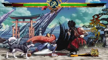 Samurai Shodown - Haohmaru en action