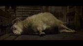Lamb - Official Trailer
