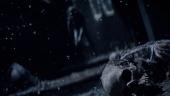 The Witcher's Bestiary - Netflix documentary